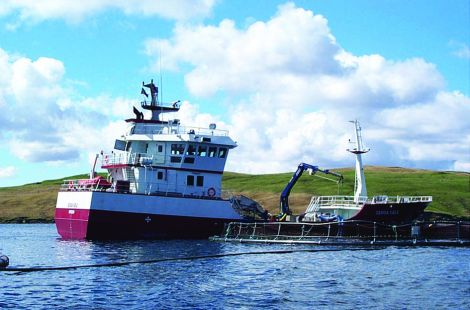 Hjaltland Seafarms admitted importing 1.1 million juvenile salmon from Norway without putting them into quarantine.