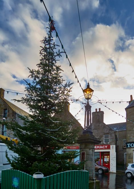 The Market Cross christmas tree waits to be lit up. Photo Chris Brown