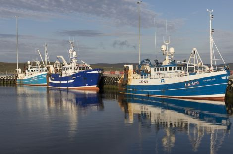 Three whitefish boats at Lerwick Harbour.